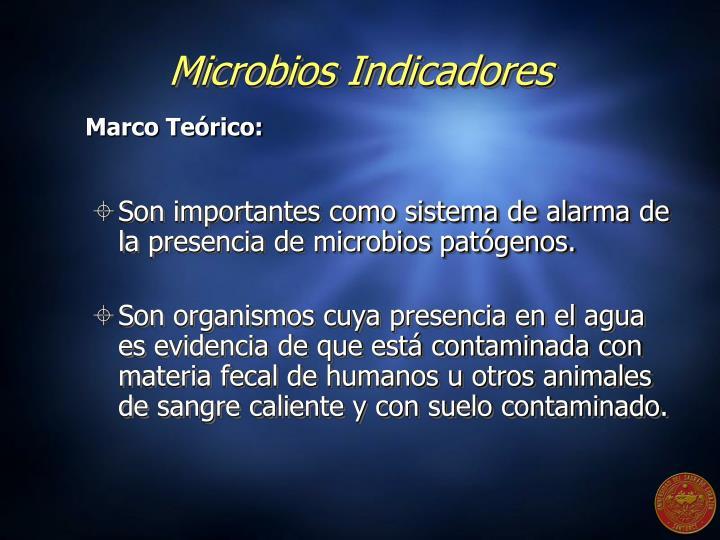 Microbios Indicadores