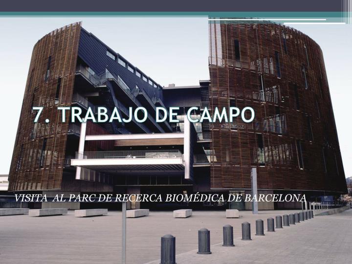 7. TRABAJO DE CAMPO