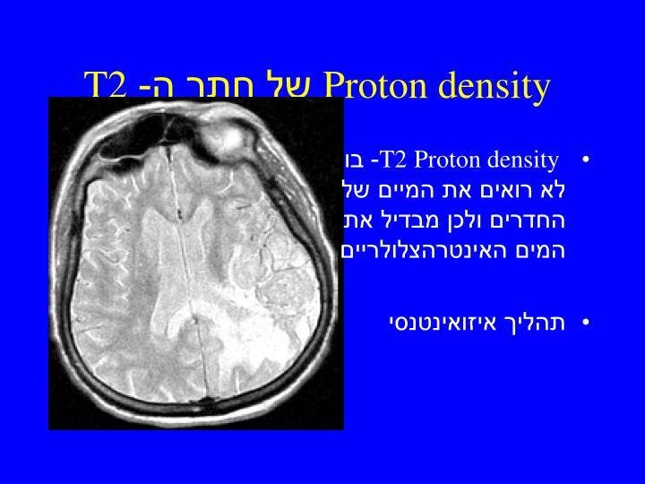 Proton density