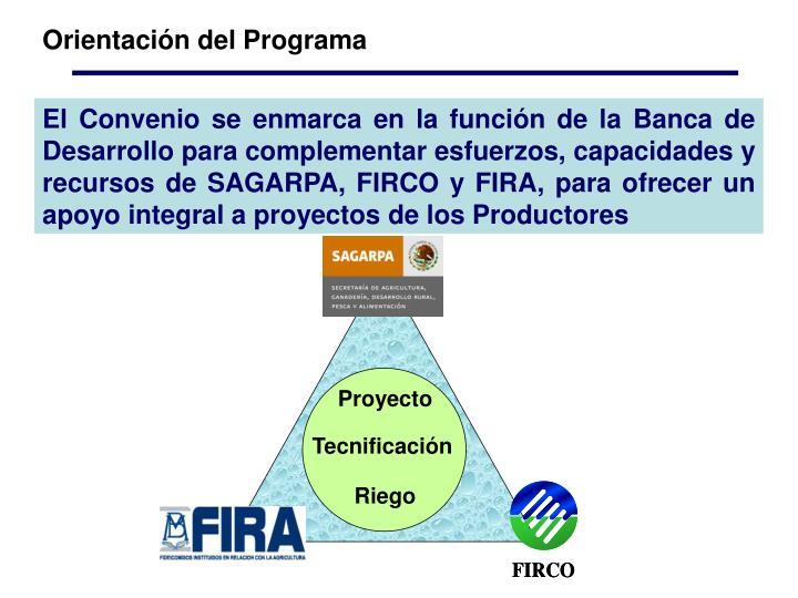 Orientación del Programa