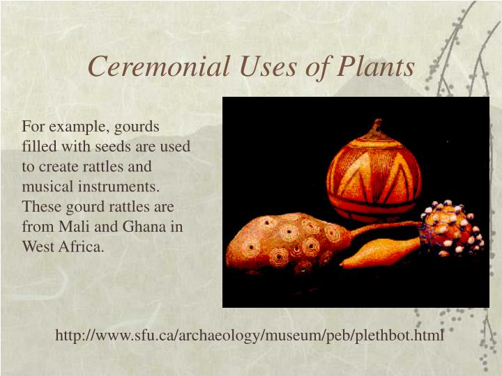 Ceremonial Uses of Plants