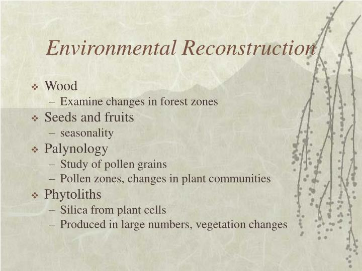 Environmental Reconstruction