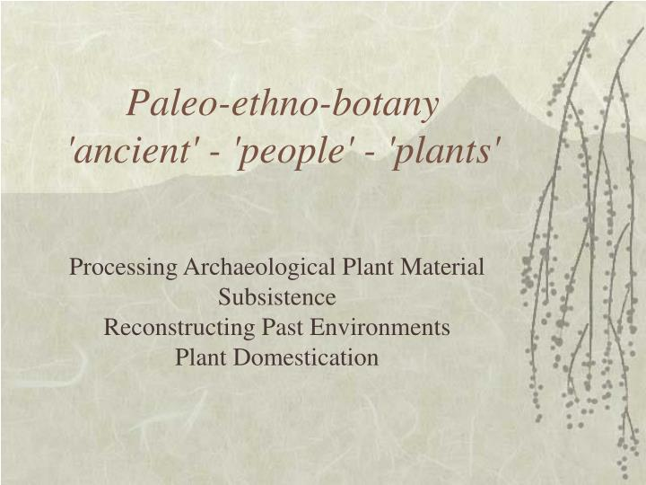 Paleo ethno botany ancient people plants