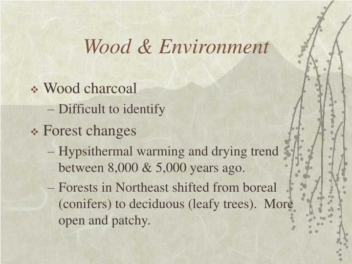 Wood & Environment