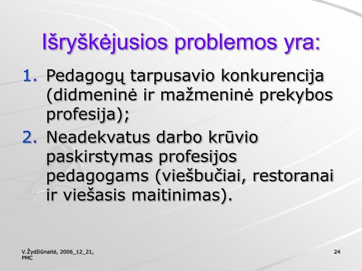 Išryškėjusios problemos yra: