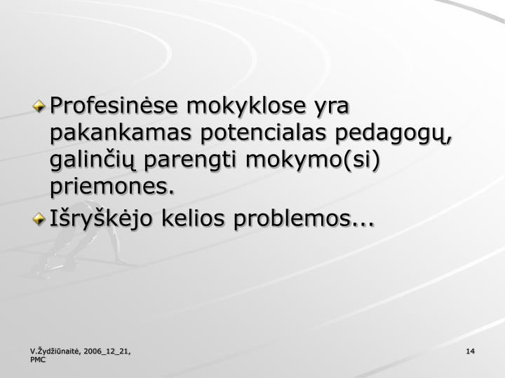 Profesinėse mokyklose