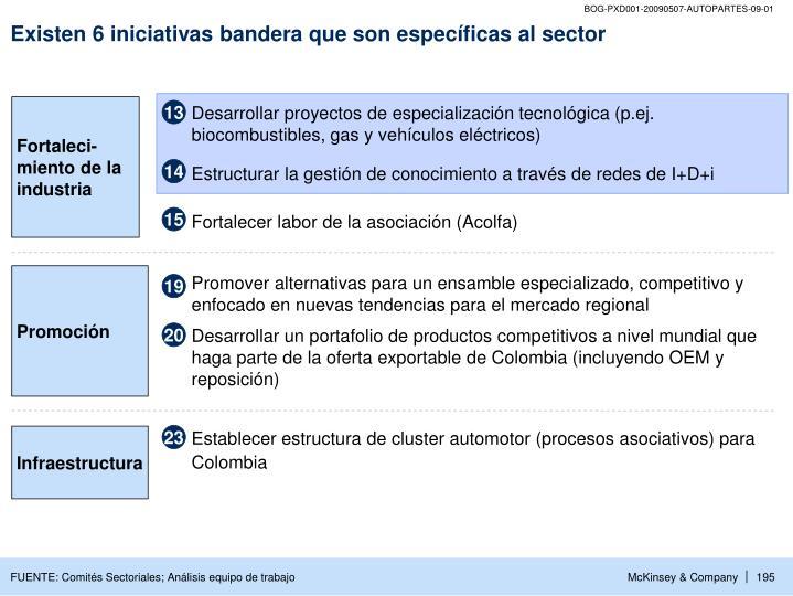 Existen 6 iniciativas bandera que son específicas al sector