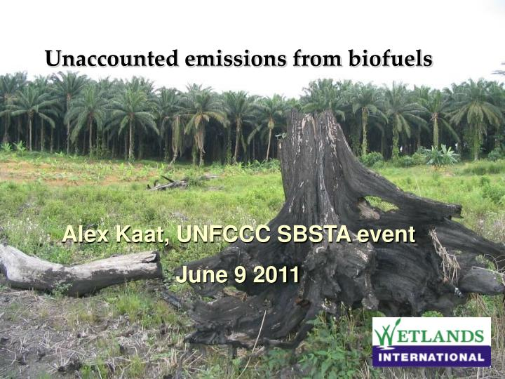 Unaccounted emissions from biofuels