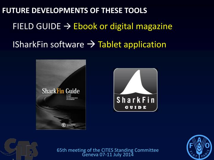 FUTURE DEVELOPMENTS OF THESE TOOLS