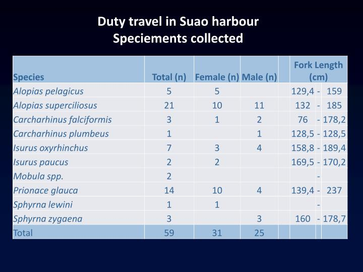 Duty travel in Suao harbour