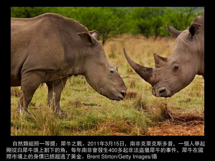 自然類組照一等獎:犀牛之戰。