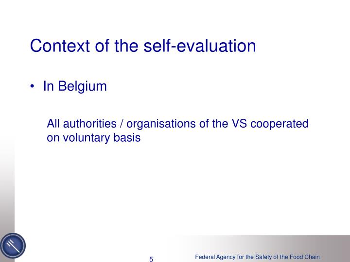 Context of the self-evaluation