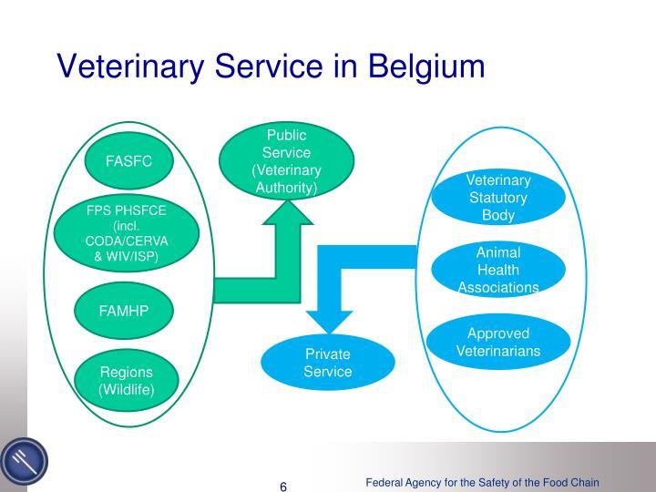 Veterinary Service in Belgium