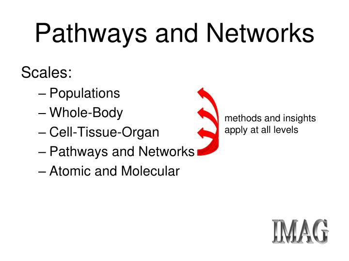 Pathways and Networks