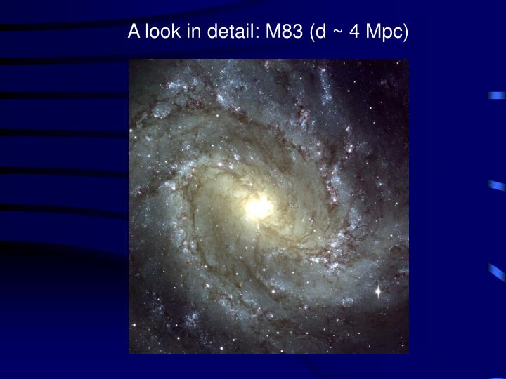 A look in detail: M83 (d
