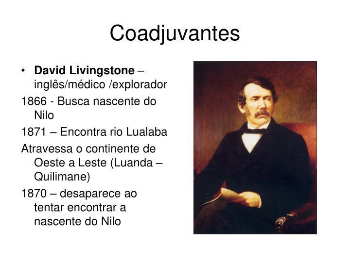 Coadjuvantes