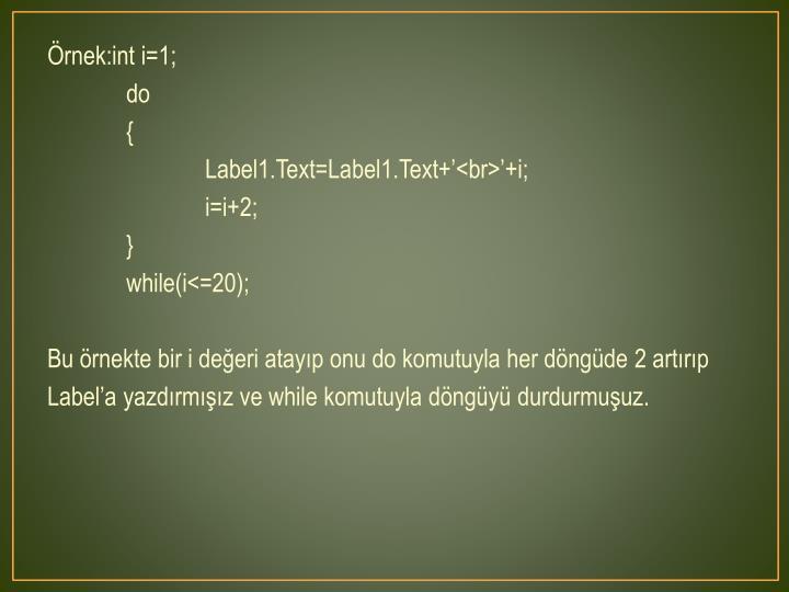 Örnek:int i=1;