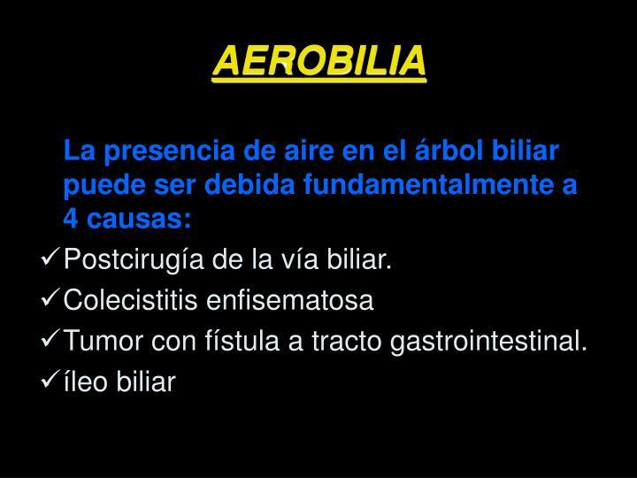 AEROBILIA