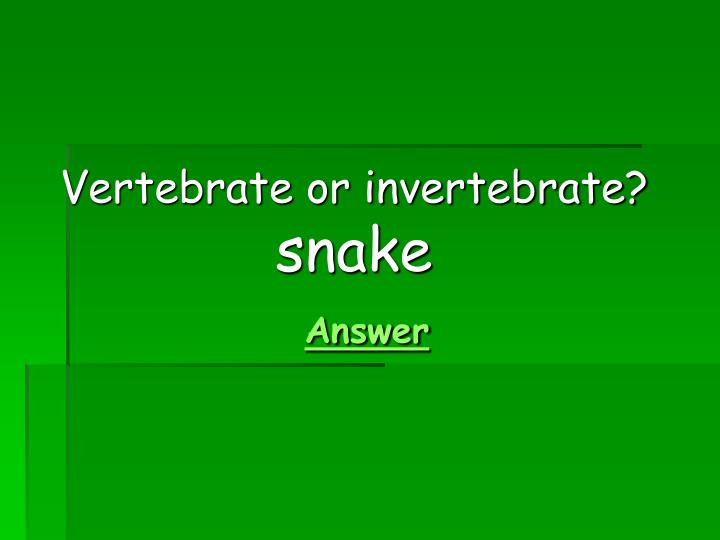 Vertebrate or invertebrate?
