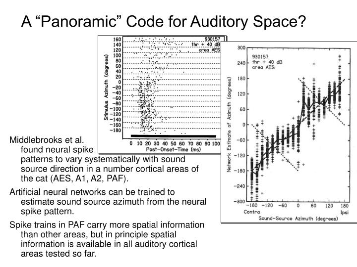 "A ""Panoramic"" Code for Auditory Space?"