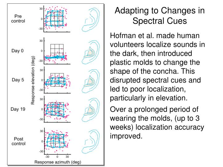 Adapting to Changes in Spectral Cues