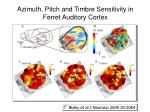 azimuth pitch and timbre sensitivity in ferret auditory cortex