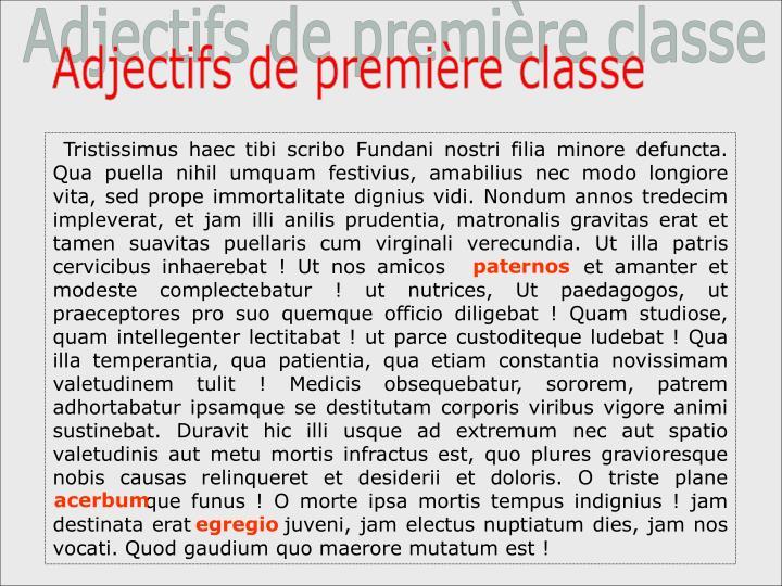 Adjectifs de première classe