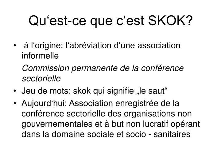 Qu'est-ce que c'est SKOK?