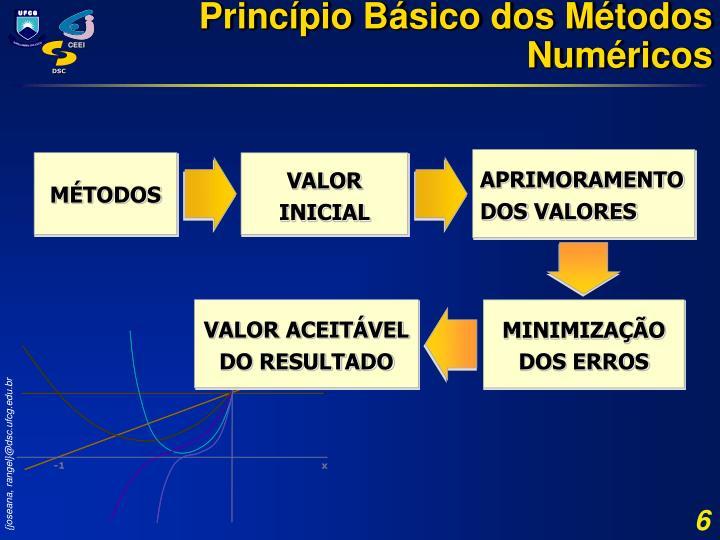 Princípio Básico dos Métodos Numéricos
