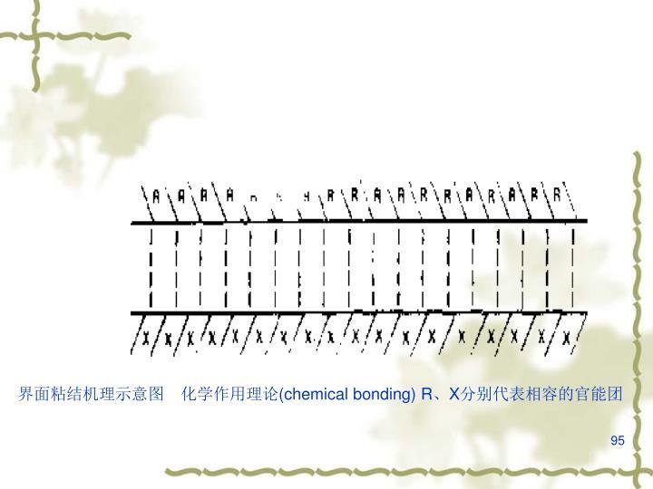 界面粘结机理示意图 化学作用理论(
