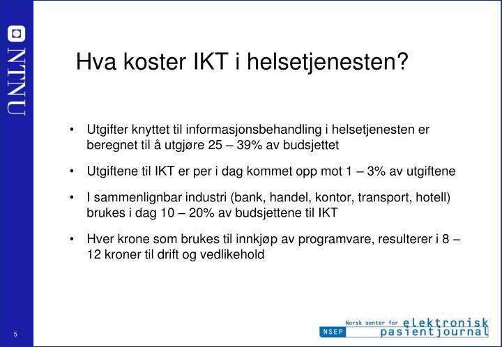 Hva koster IKT i helsetjenesten?