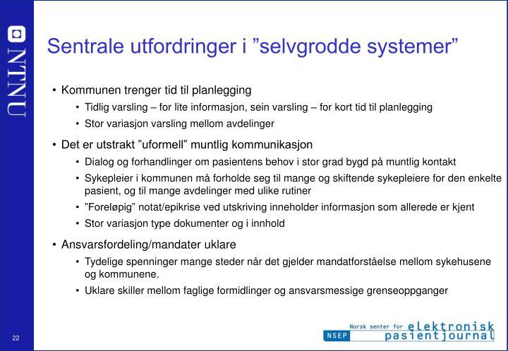 """Sentrale utfordringer i """"selvgrodde systemer"""""""