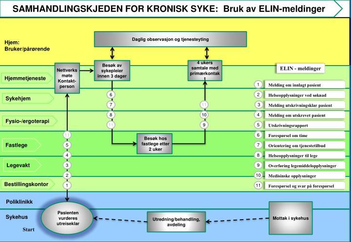 SAMHANDLINGSKJEDEN FOR KRONISK SYKE:  Bruk av