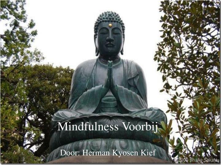 Mindfulness Voorbij