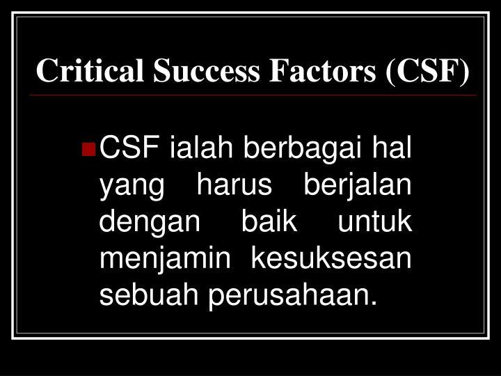 Critical Success Factors (CSF)