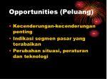 opportunities peluang