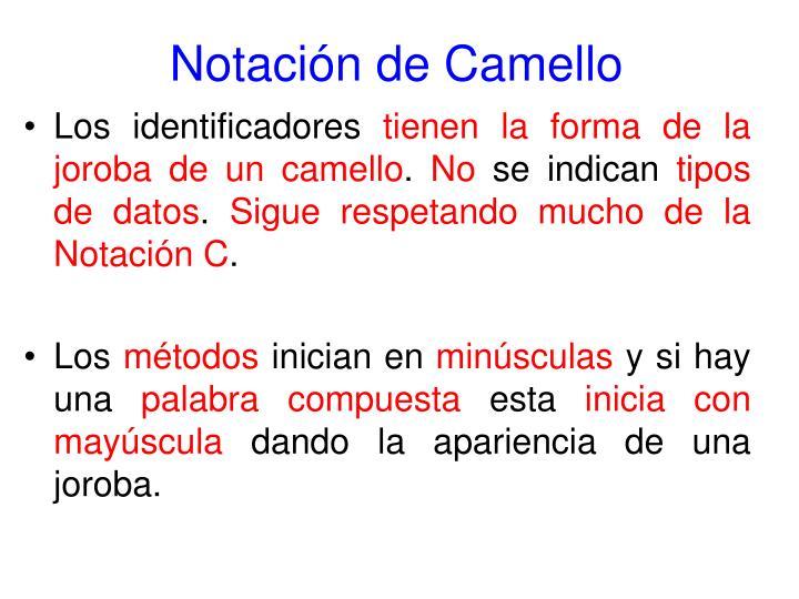 Notación de Camello