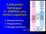 3 kebutuhan kehidupan 1 energi perlu diketahui bagaimana