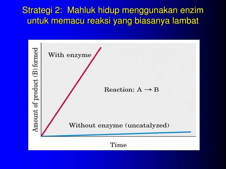 Strategi 2:  Mahluk hidup menggunakan enzim untuk memacu reaksi yang biasanya lambat