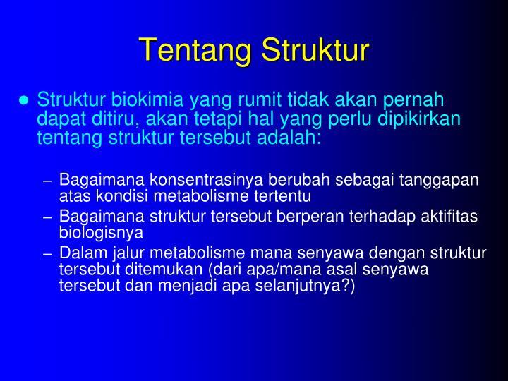 Tentang Struktur