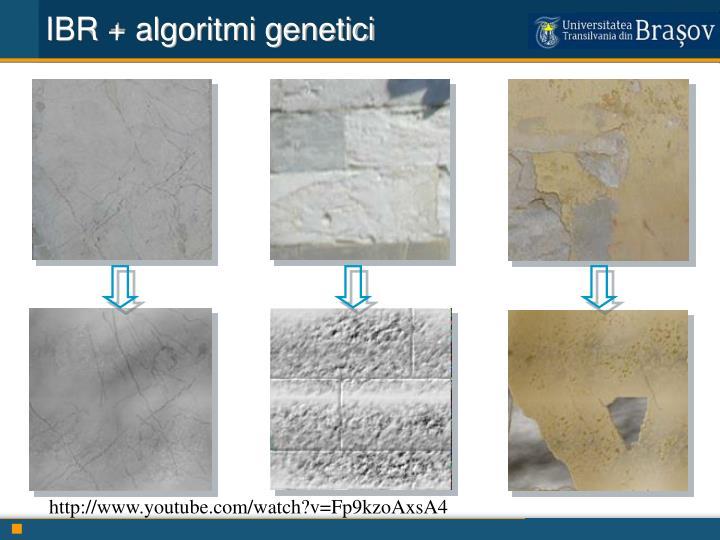 IBR + algoritmi genetici