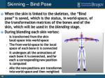 skinning bind pose