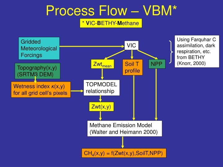 Process Flow – VBM*