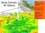 study domain w siberia