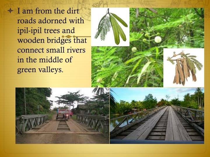 I am from the dirt roads adorned with ipil-ipil trees and wooden bridges that connect small rivers in the middle of green valleys.