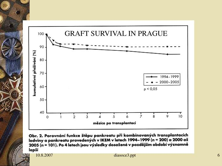 GRAFT SURVIVAL IN PRAGUE