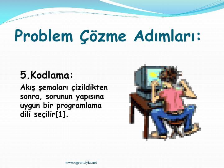 Problem Çözme Adımları: