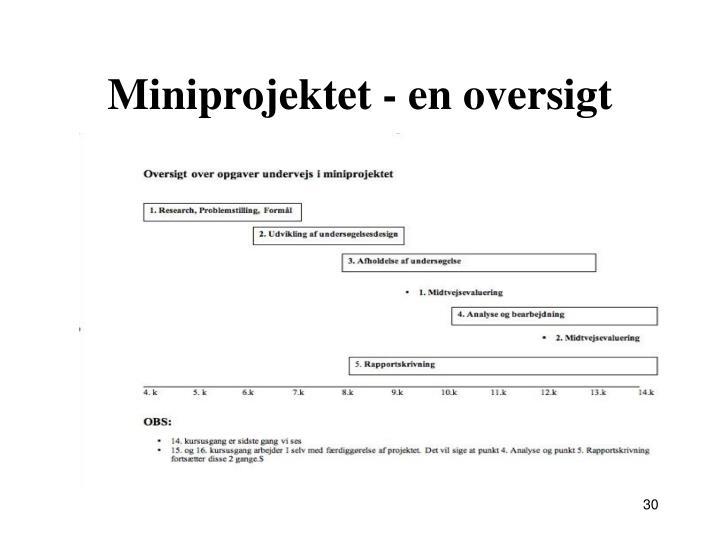 Miniprojektet - en oversigt