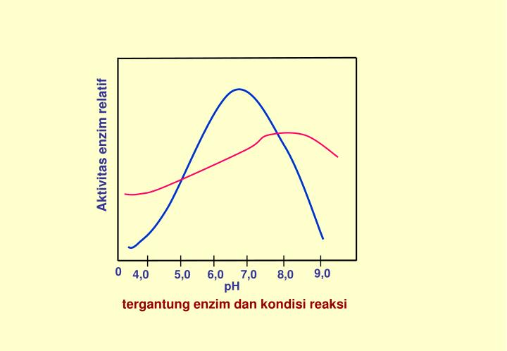 Aktivitas enzim relatif