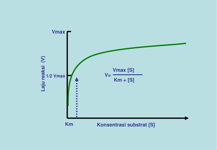 Vmax [S]